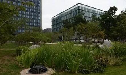 城市小区规划雨水收集利用改造方式有哪些?
