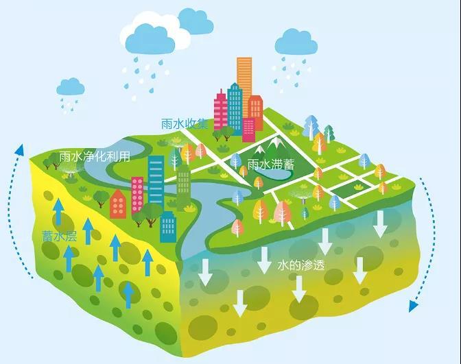 低影响开发技术对城市雨水收集利用的影响
